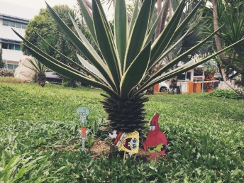 So I can reunite the gang in Bikini Bottom looking baby palm trees